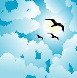 Sky and birds background Stock Photography