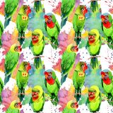 Sky birds small parrots pattern in a wildlife by watercolor style. Wild freedom, bird with a flying wings. Aquarelle bird for background, texture, pattern Stock Photos