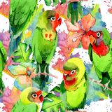 Sky birds small parrots pattern in a wildlife by watercolor style. Wild freedom, bird with a flying wings. Aquarelle bird for background, texture, pattern Stock Photography