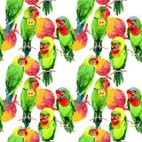 Sky birds small parrots pattern in a wildlife by watercolor style. Wild freedom, bird with a flying wings. Aquarelle bird for background, texture, pattern Royalty Free Stock Photo