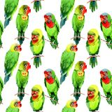 Sky birds small parrots pattern in a wildlife by watercolor style. Wild freedom, bird with a flying wings. Aquarelle bird for background, texture, pattern Royalty Free Stock Photos