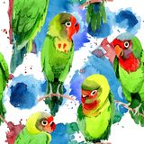 Sky birds small parrots pattern in a wildlife by watercolor style. Wild freedom, bird with a flying wings. Aquarelle bird for background, texture, pattern Stock Images