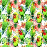 Sky birds small parrots pattern in a wildlife by watercolor style. stock illustration