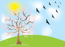 Sky birds tree. Vector Royalty Free Stock Image