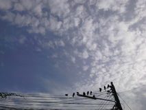 Sky  and Birds on wire. Amazing sky  in the morning, with birds on  wire , Had Yai , Songkhla,Thailand Royalty Free Stock Photos