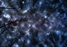 Sky, blue, abstract, space, clouds, cloud, dark, star, night, galaxy, light, nature, storm, texture, black, stars, moon, nebula, s. Picture winter forest bare royalty free illustration