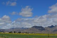 Tibet Sky. Blue sky  green land and yellow rape flower Stock Photo