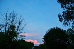 Sky blue. Blue Moon in the evening sky Stock Photos
