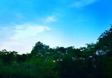 Sky blue. Blue Moon in the evening sky Royalty Free Stock Photos