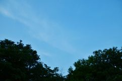 Sky blue. Blue Moon in the evening sky Stock Photo
