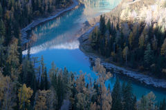 Sky blue river and trees, Kanas, xinjiang  Stock Images