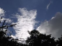 Sky. Blue sky and storm clouds royalty free stock photo
