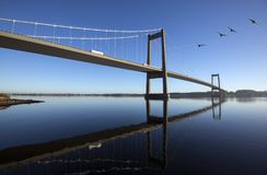 Sky blue Danish suspension bridge Royalty Free Stock Photo