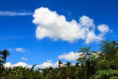 Sky. Blue sky and white clouds Stock Image