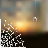 Sky blurred defocused landscape background with cobweb and spider Royalty Free Stock Image