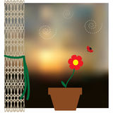 Sky blurred defocused landscape background with houseplant and curtain Stock Images