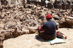 Sky burial. Is to put the dead body to feed the eagle. The eagle fly in the sky after eating, the Tibetans believe that the deceased enter heaven. After death Stock Photos