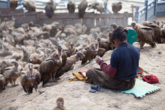Sky burial. Is to put the dead body to feed the eagle. The eagle fly in the sky after eating, the Tibetans believe that the deceased enter heaven. After death Stock Image