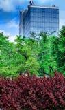 Sky city Stock Photography