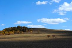 Sky and cloud above upland with autumn trees Stock Photography