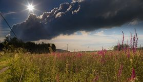 Sky, Cloud, Ecosystem, Meadow royalty free stock photography