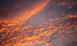 Sky and cloud in evening sunset Stock Photography