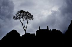 Sky, Cloud, Tree, Silhouette Stock Photography