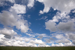 Sky with clouds above meadow in summer day. Beautiful landscape with sky with clouds above green meadow in summer day Royalty Free Stock Photography