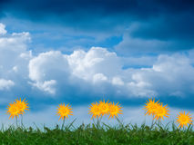 Sky  clouds   flowers Stock Photo