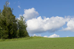 Sky with  clouds and  green meadow Stock Photo