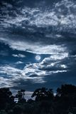 Sky with clouds and moon above silhouettes of trees. Serenity na. Night landscape of blue sky with dark cloudy and full moon above silhouettes of trees in forest Stock Photo