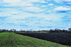 Sky with clouds over green and black fields Royalty Free Stock Photography