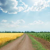 Sky with clouds over road in fields Royalty Free Stock Photo