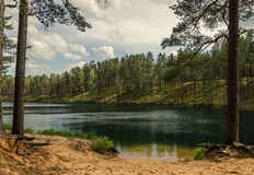 sky and clouds reflecting in forest lake Royalty Free Stock Images