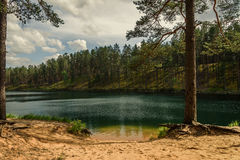 sky and clouds reflecting in forest lake Royalty Free Stock Photography