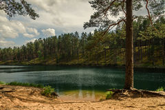 sky and clouds reflecting in forest lake Stock Photo