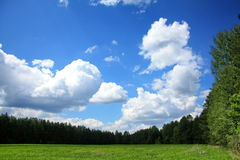 Sky, clouds and spring field. Spring field bordered by a forest, and the picturesque sky with clouds Royalty Free Stock Image