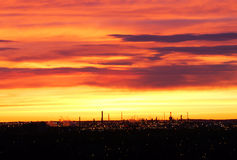 Sky and clouds at sunrise. Beautiful rosy clouds and sky at sunrise moment, city edmonton, alberta, canada Royalty Free Stock Photos