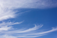 Sky with clouds. White clouds on blue sky Royalty Free Stock Images