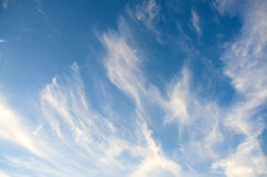 Sky and clouds. White cirrus clouds against the blue sky Royalty Free Stock Photo