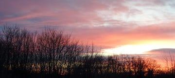 Sky colors and forest on Fruska gora mountain Stock Photos