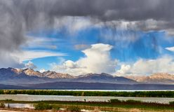 Wetland in rain. The sky is covered with dark clouds , wetland at highland , QingHai ,China stock photography