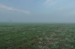 Sky. Dawn, sunrise. Clouds, and fog on the meadow. Stock Photo