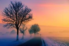 Sky, Dawn, Sunrise, Tree Royalty Free Stock Photos