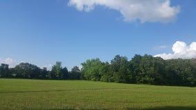 Sky& x27 de midi ; s Image libre de droits