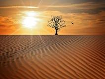 Sky, Erg, Desert, Landscape Stock Photography