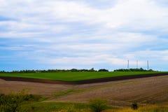 sky för liggande för bakgrundsfältgräs Royaltyfria Foton