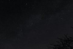 sky för natt för abstraktionillustrationblixt Fotografering för Bildbyråer