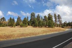 sky för väg för molniga fält för kanjon storslagen till Royaltyfri Foto