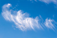 Sky feathers5 Royalty Free Stock Image